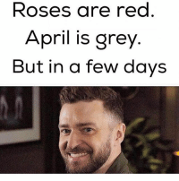 IT'S GONNA BE MAY: Roses are red  April is grey  But in a few days IT'S GONNA BE MAY