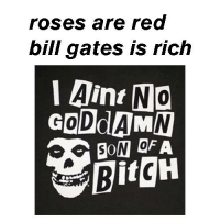 Whoah!  #danzigmemes #rosesarered: roses are red  bill gates is rich  Aint NO  0  BitgH Whoah!  #danzigmemes #rosesarered
