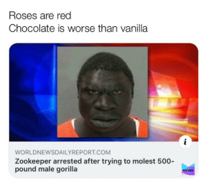 Do you like vanilla?: Roses are red  Chocolate is worse than vanilla  WORLDNEWSDAILYREPORT.COM  Zookeeper arrested after trying to molest 500-  pound male gorilla  MEMES Do you like vanilla?