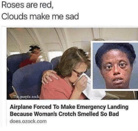 Ass, Bad, and Fucking: Roses are red  Clouds make me sad  Tlie.purple.sock  Airplane Forced To Make Emergency Landing  Because Woman's Crotch Smelled So Bad  does.ozock.com memes-r-ass:This is fucking fantastic