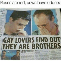 Memes, 🤖, and Red: Roses are red, cows have udders.  a for  ute  orfu  GAY LOVERS FIND OUT  THEY ARE BROTHERS ComedyNobelpreis