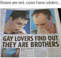 Dank, Porno, and Red: Roses are red, cows have udders  a for  ute  ortu  GAY LOVERS FIND OUT  THEY ARE BROTHERS Where can I find this porno
