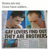 Funny, Awkward, and Rose: Roses are red  Cows have udders  ribute  Corfu  cop's  GAY LOVERS FIND OUT  THEY ARE BROTHERS Awkward. (@zucccccccccccc)