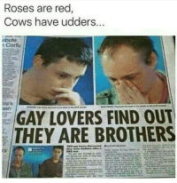 Family, Red, and Brothers: Roses are red  Cows have udders..  ributo  Corfu  sh  GAY LOVERS FIND OUT  THEY ARE BROTHERS  IS <p>Keep it in the family 👩‍❤️‍💋‍👩</p>