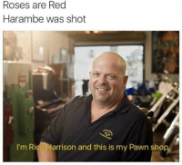 rick harrison: Roses are Red  Harambe was shot  I'm Rick Harrison and this is my Pawn shop