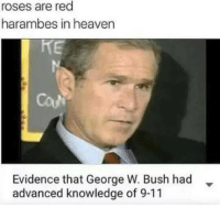 LOL: roses are red  harambes in heaven  Evidence that George W. Bush had  advanced knowledge of 9-11 LOL
