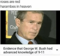 Lovely: roses are red  harambes in heaven  Evidence that George W. Bush had  advanced knowledge of 9-11 Lovely