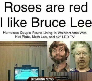 "Absolute mad lads: Roses are red  I like Bruce Lee  Homeless Couple Found Living In WalMart Attic With  Hot Plate, Meth Lab, and 42"" LED TV  001  BREAKING NEWS Absolute mad lads"