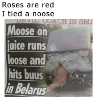 "Dank, Meme, and Http: Roses are red  I tied a noose  Moose on  uice runs  loose and  hits buus  in Belarus  DEviu COACH IN SM <p>I tied a noose via /r/dank_meme <a href=""http://ift.tt/2nmWYK1"">http://ift.tt/2nmWYK1</a></p>"