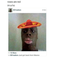 Mexico, Back, and Black Twitter: roses are red  im a ho  501nation  6m  MATT  13 likes  501nation Just got back from Mexico 🤧