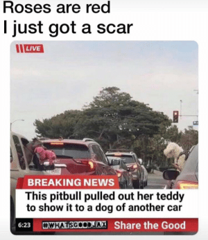 DO YOU REALLHAVE THE SCAR? ISSA KNIFE   Scar Meme on ME ME