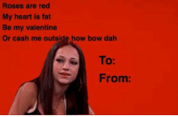 Roses are red  My heart is fat  Be my valentine  Or cash me outside how bow dah  To:  From Bahaha ~Rayne Badger
