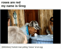 """Memes, Rose, and 🤖: roses are red  my name is Greg  [ORIGINAL] Turkish man yelling """"meow"""" at an egg"""