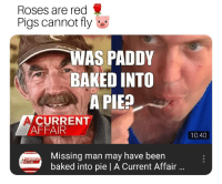 Baked, Run, and Chicken: Roses are red  Pigs cannot fly  WAS PADDY  BAKED INTO  A PIEP  CURRENT  AFFAIR  10:40  Missing man may have been  baked into pie | A Current Affair  REN