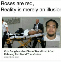 He kept it 1 hunna 💯💯😂😂: Roses are red  Reality is merely an illusior  @dsjoe deux  Crip Gang Member Dies of Blood Lost After  Refusing Red Blood Transfusion  Cream bmp.com He kept it 1 hunna 💯💯😂😂