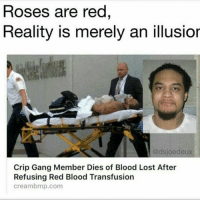 Wtf 😂😂😂: Roses are red  Reality is merely an illusior  @dsjoe deux  Crip Gang Member Dies of Blood Lost After  Refusing Red Blood Transfusion  creambmp.com Wtf 😂😂😂