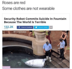 Meirl by ThatOneKidOnTheSt MORE MEMES: Roses are red  Some clothes are not wearable  Security Robot Commits Suicide In Fountain  Because The World Is Terrible  132.2K  Share on Facebook  Share on Twitter  SHARES  @mateyouwot Meirl by ThatOneKidOnTheSt MORE MEMES