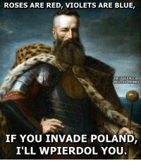 A poem by Hetman Stefan Czarniecki.: ROSES ARE RED, VIOLETS ARE BLUE,  FBy POLEMICAL  POLISH MEMES  IF YOU INVADE POLAND  I'LL WPIER DOL YOU A poem by Hetman Stefan Czarniecki.