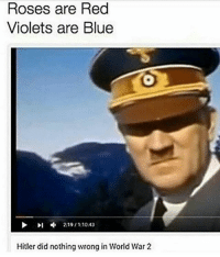 Memes, Blue, and Hitler: Roses are Red  Violets are Blue  Hitler did nothing wrong in World War 2 Schaut mal greatest story never told 😅