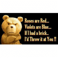 roses are red violets are blue: Roses are Red...  Violets are Blue...  If I had a brick.  I'd Throw it at You