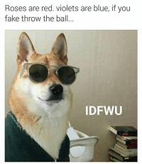 Fantastic meme from @chaos.reigns_ (DM-email me if this is your dog.): Roses are red. Violets are blue, if you  fake throw the ball  IDFWU Fantastic meme from @chaos.reigns_ (DM-email me if this is your dog.)