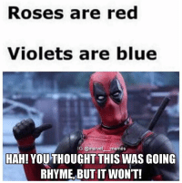 - The Blind Lawyer captainamericacivilwar captainamerica civilwar blackpanther blackwidow falcon spiderman spidermanhomecoming vision antman wasp wintersoldier scarletwitch quicksilver hawkeye hulk thor thorragnarok gotg guardiansofthegalaxy doctorstrange avengers avengersinfinitywar marvelmovies makespidermangreatagain spidermanps4: Roses are red  Violets are blue  IG:@marve  memes  HAH! YOUTHOUGHT THIS WAS GOING  RHYME, BUT IT WON'T! - The Blind Lawyer captainamericacivilwar captainamerica civilwar blackpanther blackwidow falcon spiderman spidermanhomecoming vision antman wasp wintersoldier scarletwitch quicksilver hawkeye hulk thor thorragnarok gotg guardiansofthegalaxy doctorstrange avengers avengersinfinitywar marvelmovies makespidermangreatagain spidermanps4