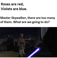 Credit - Станимир Гешев‎: Roses are red  Violets are blue.  Master Skywalker, there are too many  of them. What are we going to do? Credit - Станимир Гешев‎
