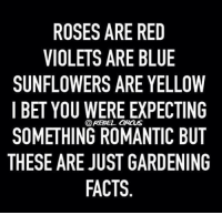 roses are red violets are blue: ROSES ARE RED  VIOLETS ARE BLUE  SUNFLOWERS ARE YELLOW  I BET YOU WERE EXPECTING  SOMETHING ROMANTIC BUT  THESE ARE JUST GARDENING  FACTS  @REBEL IRCUS