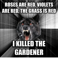 Insanity Wolf: ROSES ARE RED VIOLETS  ARE RED, THE GRASS IS RED  IKILLED THE  GARDENER