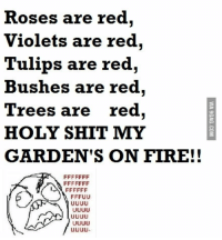 Copy Pasta: Roses are red  Violets are red,  Tulips are red,  Bushes are red,  Trees are  red  HOLY SHIT MY  GARDEN'S ON FIRE!!