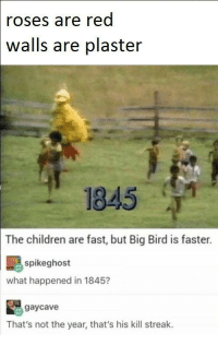 Children, Club, and Hello: roses are red  walls are plaster  1845 T  The children are fast, but Big Bird is faster.  spikeghost  what happened in 1845?  gaycave  That's not the year, that's his kill streak. laugh24h:  Hello there