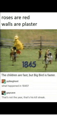 Children, Run, and Big Bird: roses are red  walls  are plaster  1845  The children are fast, but Big Bird is faster.  spikeghost  what happened in 1845?  gaycave  That's not the year, that's his kill streak. Run.