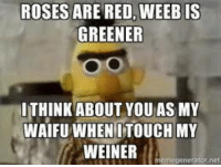 Well, did you miss us?- Frogerino: ROSES ARE RED, WEEBIS  GREENER  ITHINK ABOUT YOU AS MY  WAIFU WHEN ITOUCH MY  WEINER  emagen  tor not Well, did you miss us?- Frogerino