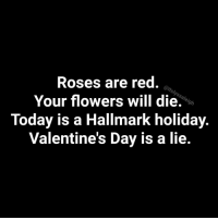 Valentines Day is a lie...    Memes by @itslyssaleigh  Instagram @itslyssaleigh: Roses are red.  Your flowers will die.  Today is a Hallmark holiday.  Valentine's Day is a lie.  S/ Valentines Day is a lie...    Memes by @itslyssaleigh  Instagram @itslyssaleigh