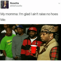 Memes, 🤖, and Rosetta: Rosetta  N @MafiosoRo  My momma: I'm glad I ain't raise no hoes  Me 😂😂😂