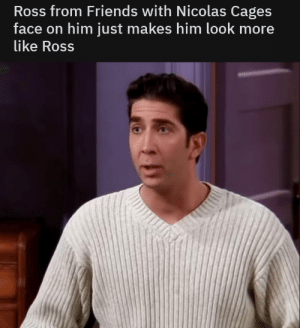 Ass, Dank, and Friends: Ross from Friends with Nicolas Cages  face on him just makes him look more  like Ross meirl by pass-into-the-ass MORE MEMES