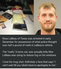 "Sure I can use the defrost button but I'd rather have my car smell like a 45 yr old librarian's apartment. texas: Ross LeBeau of Texas was arrested in early  December for possession of what police thought  was half a pound of meth in LeBeau's vehicle.  The ""meth,"" it turns out, was actually kitty litter  LeBeau was using to reduce fog on his windows.  I love his mug shot. Definitely a face that says ""I  can't wait till you idiots have to apologize to me."" Sure I can use the defrost button but I'd rather have my car smell like a 45 yr old librarian's apartment. texas"