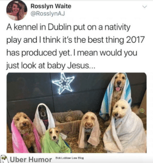 failnation:  All I want for Christmas: Rosslyn Waite  @RosslynAJ  A kennel in Dublin put on a nativity  play and Ithink it's the best thing 2017  has produced yet. I mean would you  just look at baby Jesus..  Uber Humo  Bob Loblaw Law Blog failnation:  All I want for Christmas