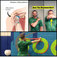 Blade, Gym, and Memes: Rotator cuff problems  Inflamed/torn  tendons  Does This Movement Hurt Shoulder impingement pain is one of the common injuries athletes sustain. If you have pain on the front-lateral part of your shoulder with the test (shown upper left), your pain may be due to this type of problem👊🏻 . This problem in athletes can be due to poor posture, lack of dynamic stability (coordination) or muscle imbalances (rotator cuff weakness). This causes the humerus (arm bone) to rotate off its center axis & push into different tissues, leading to eventual pain ❌ . The banded exercises shown below (called the upper extremity matrix at @boostsportskc) is a great exercise to help restore this strength & coordination. Perform 2 sets of 10 movements up, out and down as shown. Let your arm move back to the start position SLOWLY. This will lead to a good fatigue in the outside of the shoulder✅ & should NOT cause pain❌ . If this does not help decrease pain, also look at shoulder blade (scapula) positioning & thoracic spine mobility as movement problems-stiffness in both can lead to impingements as well . As always, these corrective exercises are to help with minor aches & pains that occur during barbell training. If you have a serious injury or have been dealing with pain for a long time, I always recommend going to get checked out by a medical practitioner. _________________________________ Squat University is the ultimate guide to realizing the strength to which the body is capable of. The information within these pages are provided to empower you to become a master of your physical body. Through these teachings you will find what is required in order to rid yourself of pain, decrease risk for injury, and improve your strength and athletic performance. ________________________________ Squat SquatUniversity Powerlifting weightlifting crossfit training wod workout gym fit fitfam fitness fitspo oly olympicweightlifting hookgrip mobility USAW physicaltherapy lifting crossfitter correctiveexercise shoulderpain