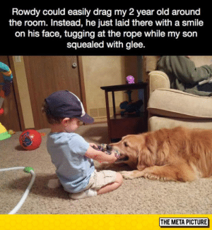 epicjohndoe:  Dogs Are The Best: Rowdy could easily drag my 2 year old around  the room. Instead, he just laid there with a smile  on his face, tugging at the rope while my son  squealed with glee  THE META PICTURE epicjohndoe:  Dogs Are The Best
