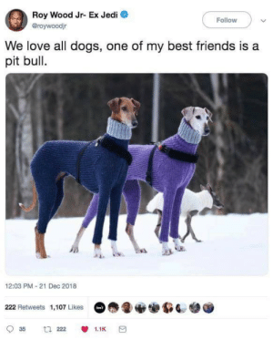 Dank, Dogs, and Friends: Roy Wood Jr- Ex Jedi  Broywoodjr  Follow  We love all dogs, one of my best friends is a  pit bull.  12:03 PM 21 Dec 2018  222 Retweets 1,107 Likes We love all dogs by PoorHighClass MORE MEMES