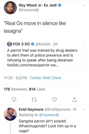 "Gangsta, Jedi, and News: Roy Wood Jr- Ex Jedi  @roywoodjr  ""Real Gs move in silence like  lasagna  台FOX 5 DC $ @fox5dc . 2d  A parrot that was trained by drug dealers  to alert them of police presence and is  refusing to speak after being detained  fox5dc.com/news/parrot-wo  11:25 5/2/19 - Twitter Web Client  176 Retweets 814 Likes  Enid Seymore @EnidSeymore 1h v  Replying to @roywoodjr  Gangsta parrot ain't scared  Whatchugondo? Lock him up in a  cage? Trained by a real one Polly is no snitch."