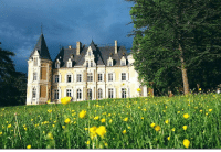 Tumblr, Blog, and Http: royaltyandpomp: THE PALACE   Chateau d'Azy Garden