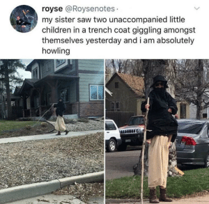 Children, Dank, and Memes: royse @Roysenotes  my sister saw two unaccompanied little  children in a trench coat giggling amongst  themselves yesterday and i am absolutely  howling me_irl by Kightia MORE MEMES
