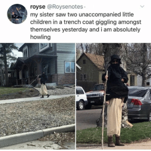 Children, Family, and Funny: royse @Roysenotes  my sister saw two unaccompanied little  children in a trench coat giggling amongst  themselves yesterday and i am absolutely  howling 20 Funny Memes & Tweets That Keep It All In The Family - Memebase - Funny Memes