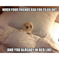 Hell yeah 😂😂😂 regram from the homie @rodwyla: WHEN YOUR FRIENDS ASK YOU TOGOOUT  AND YOU ALREADY IN BED LIKE Hell yeah 😂😂😂 regram from the homie @rodwyla