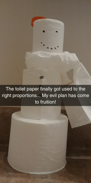 Funny, Cold, and Evil: rs,  The toilet paper finally got used to the  right proportions... My evil plan has come  to fruition! A few months late, but the cold just wont leave.