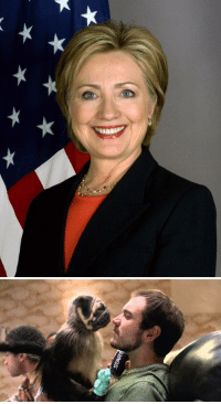 RT FOR PUPPY MONKEY LIKE FOR HILLARY CLINTON: RT FOR PUPPY MONKEY LIKE FOR HILLARY CLINTON