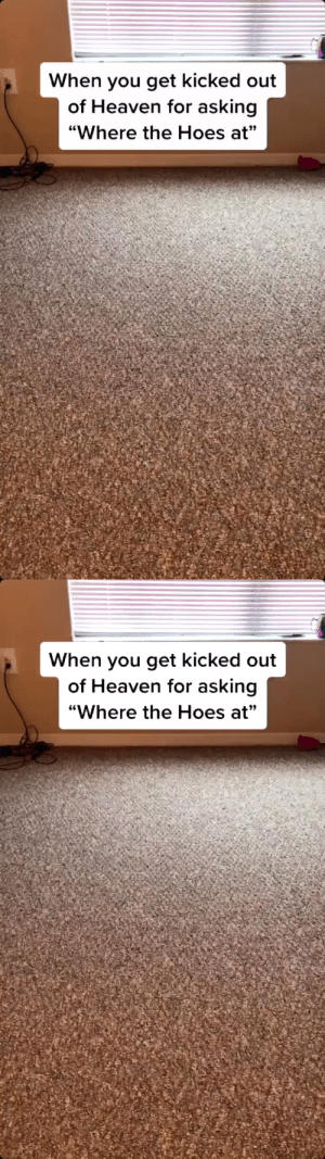 """RT @itsofficialtazz: When you get kicked out of Heaven for asking """"Where the Hoes at""""🤦🏾♂️😂😂 https://t.co/yTXjRGdq03: RT @itsofficialtazz: When you get kicked out of Heaven for asking """"Where the Hoes at""""🤦🏾♂️😂😂 https://t.co/yTXjRGdq03"""