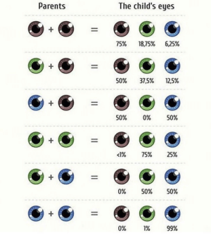 RT @learnthngs: All about the eye color genetics chart. 👀 👀 https://t.co/lZLq6UbATD: RT @learnthngs: All about the eye color genetics chart. 👀 👀 https://t.co/lZLq6UbATD